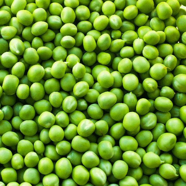 frozen garden peas b grade bulk tote bins kg monteagle brand simpplier